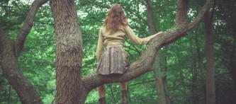 Rüyada Ağaca Çıkmak